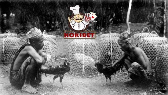 Alasan Kenapa Sabung Ayam Di Indonesia Tidak Bisa Hilang