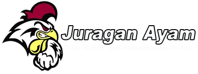 Situs Berita dan Judi Agen Sabung Ayam Terbaik di indonesia