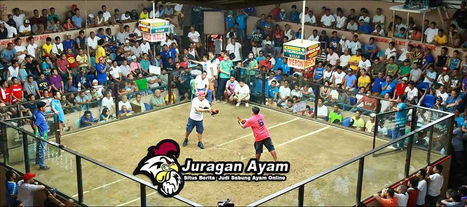 Arena Sabung Ayam S128 Filipina