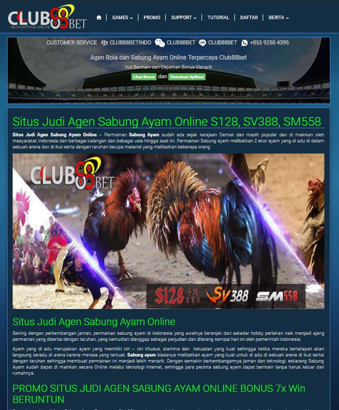 Keuntungan bermain sabung ayam online, sabung ayam online, agen sabung ayam online