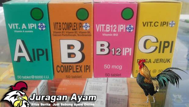 vitamin ayam aduan