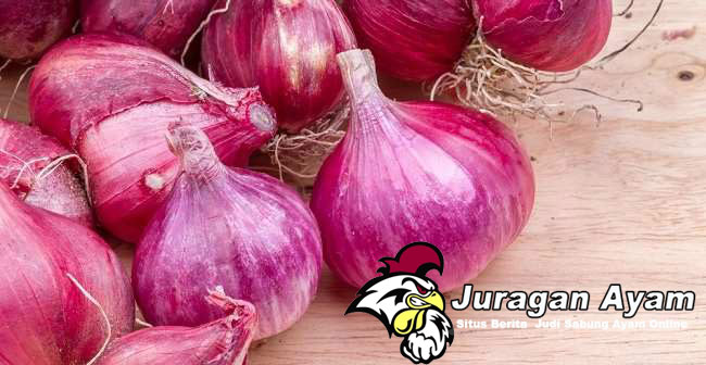 Manfaat Pemberian Bawang Putih Dan Bawang Merah Untuk Ayam